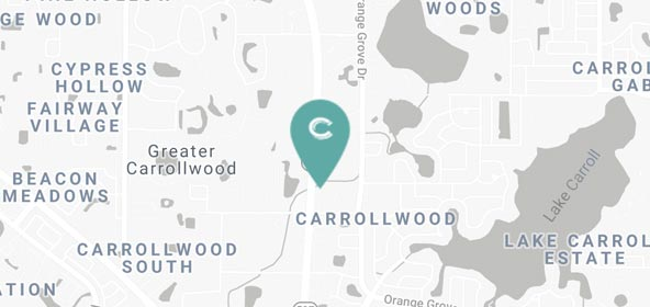 Carrabba's Delivery - 11435 N Dale Mabry Hwy